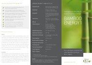 CleanPlanet-BambooEnergy1-Flyer - Fondsvermittlung24.de