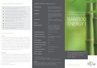 Flyer/Factsheet - Bamboo Energy 1