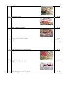 tabela com ft - Page 5