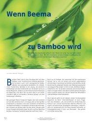 zu Bamboo wird - Bamboo Energy 1