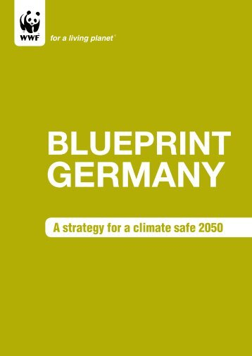 Blueprint Germany - Öko-Institut eV