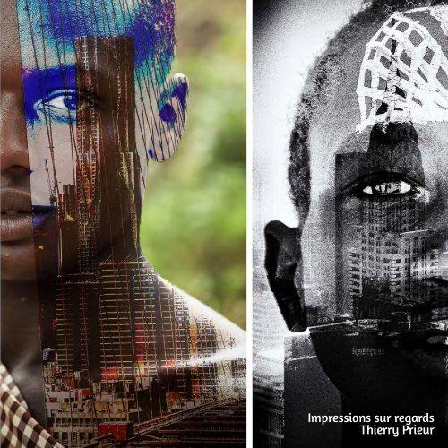 Thierry Prieur - Impressions sur regards