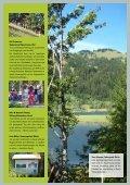 Es gibt viel zu tun – pflanzen wir's an! - Clean Forest Club - Seite 7