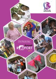 The Purple Ray Annual Report 2017