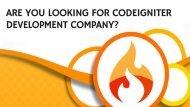 Codeigniter Development Company