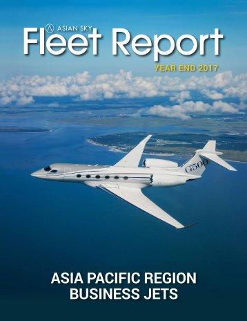 Jet Fleet Report - EN