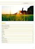 Pferderegion - Rund um Hannover - Page 3