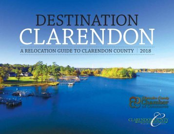 clarendon_destination (002)