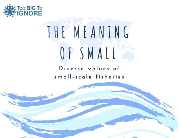 The Meaning of Small: Diverse Values of Small-Scale Fisheries