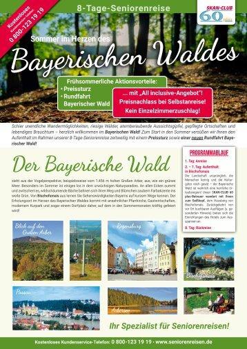 Sommer im Herzen des Bayerischen Waldes