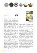 Timotheus Magazin #13 - Gnade - Seite 2