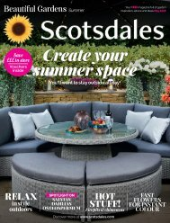 Scotsdales Beautiful Gardens Simmer Issue