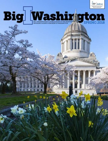 Big I Washington Spring 2018