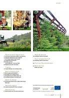 Waldverband Aktuell - Ausgabe 2018-02 - Seite 3