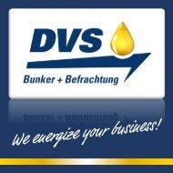 Flyer DVS Mail