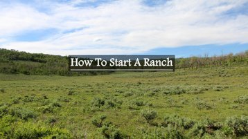 How to Start a Ranch
