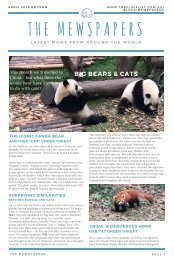 The Mewspapers - APRIL 2018