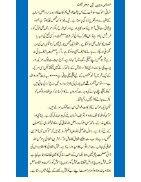 Insani Rawayye  - Page 2