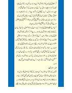 Insani Rawayye  - Page 4