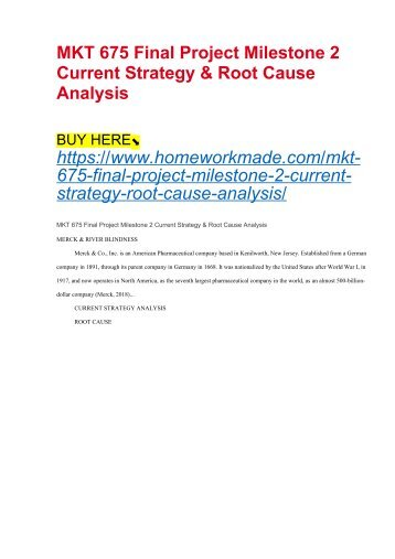 MKT 675 Final Project Milestone 2 Current Strategy & Root Cause Analysis