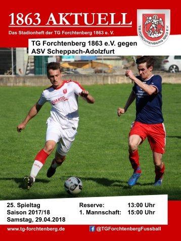 13 TGF - ASV Scheppach-Adolzfurt