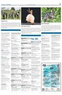 Berner Kulturagenda 2018 N°16 - Page 5