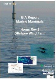 EIA Report Marine Mammals Horns Rev 2 Offshore Wind Farm