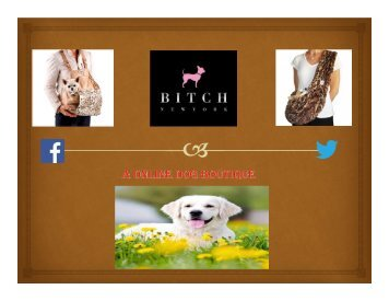 Dog Apparel & Accessories from Renowned Designers