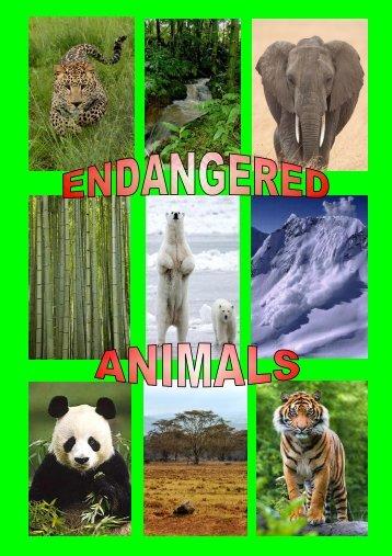 Revista - Endangered Animals