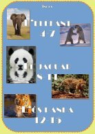 Revista - Endangered Animals - Page 2