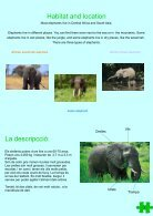 Revista - Endangered Animals - Page 5