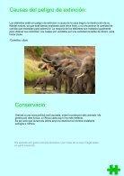 Revista - Endangered Animals - Page 7