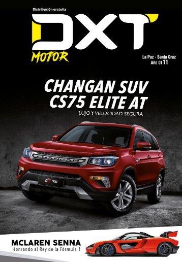 DXT Motor Nº 11