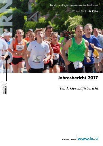 Jahresbericht 2017 – Teil I: Geschäftsbericht