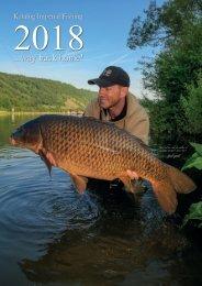 25 UK size11 Quick Change multi clips Lead Link Clip Carp barbel fishing 9mm