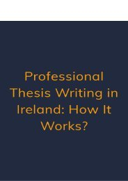 Professional Thesis Writing in Ireland : How It Works
