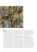 Magazin Zoë 10/18 - Page 7