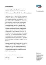 PDF herunterladen - BVI