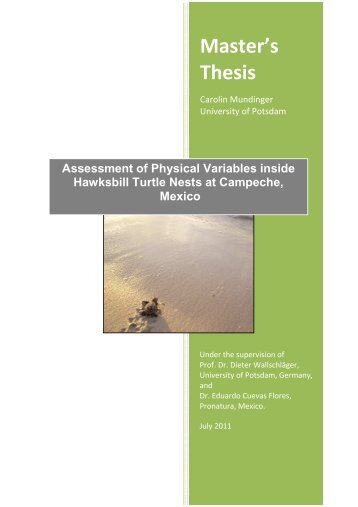 Assessment of Physical Variables inside Hawksbill Turtle Nests at Campeche, Mexico_C.Mundinger