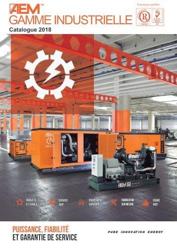 2018 - Gamme Industrielle catalogue - FR