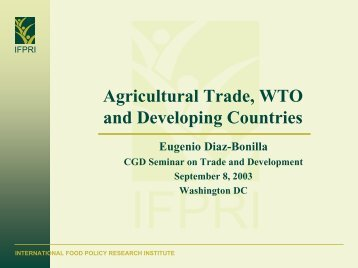 wto and developing countries Intellectual property rights, the wto and developing countries: the trips agreement and policy options.