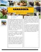 revista (meredith rodriguez) (arado) - Page 7