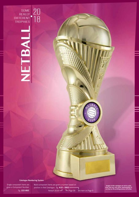 2018 Some Really Different Netball Trophies