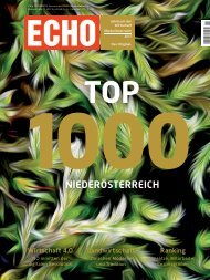 Top1000 Unternehmen in Nienderösterreich 2017