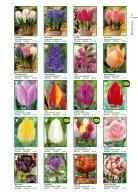 Abbildungen Herbst, Packungen Flora-Elite, Saison 2018 - Seite 3