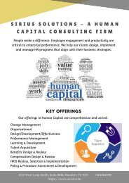 Sirius Solutions - A Human Capital Consulting Firm