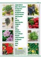 Pflanzen 2018 - Seite 3