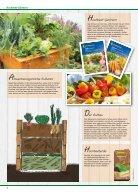 Pflanzen 2018 - Seite 4