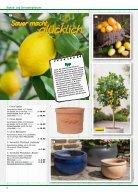 Pflanzen 2018 - Seite 6