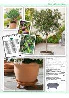 Pflanzen 2018 - Seite 7